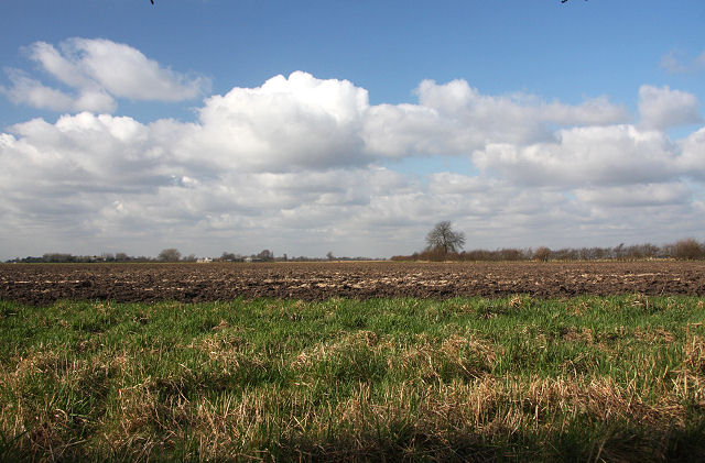 Farmland at Block Fen