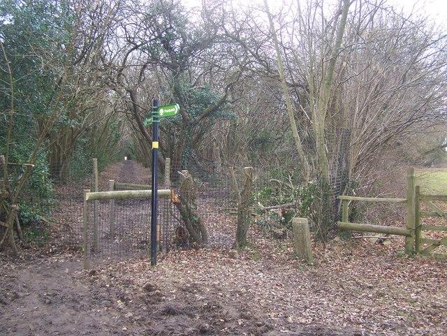 Greensand Way crosses Greenhill Lane