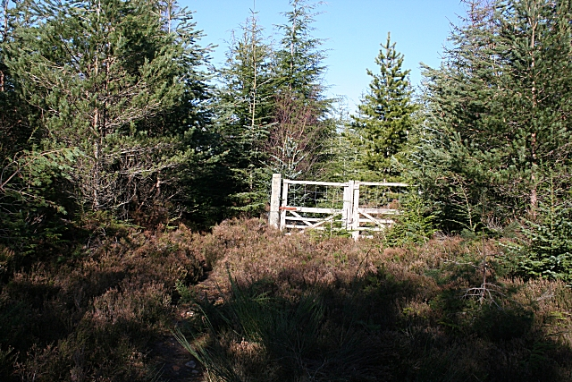 Gate in the Deer Fence