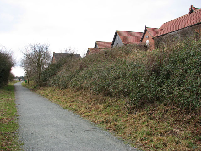 Houses in Mileham Drive