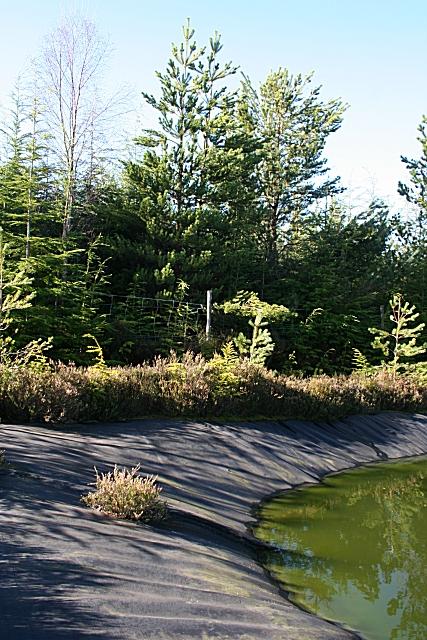 Plastic Pond Liner