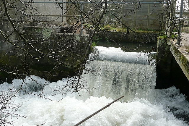 Weir at Padworth Mill