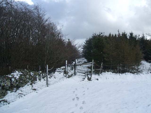 Stile and track, Setmurthy Common