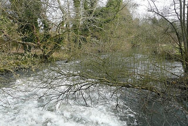 Mill stream at Padworth