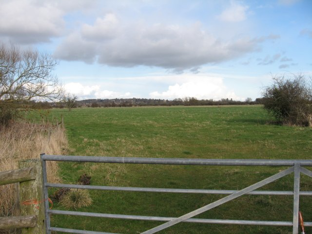 The Island Meadow at  Eye Mead