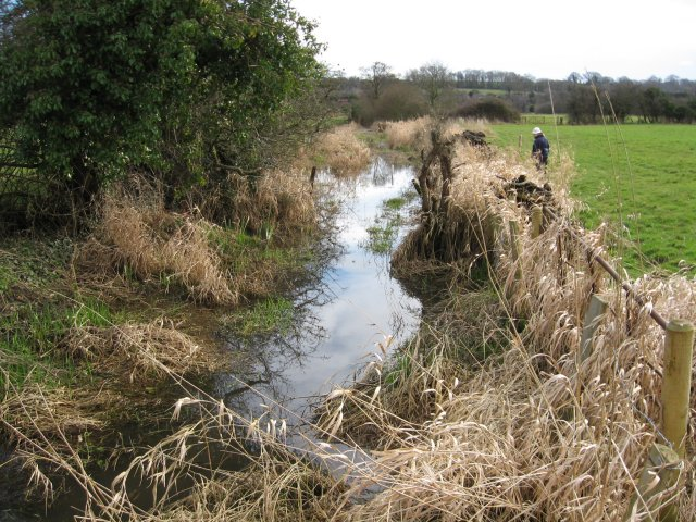 The Old Mill Stream, Eye Mead