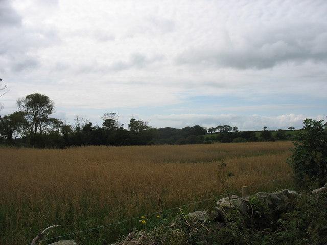 Cropland at Erddreiniog