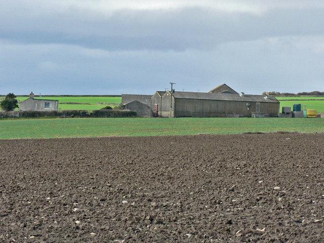 Gileston Farm, Gileston.