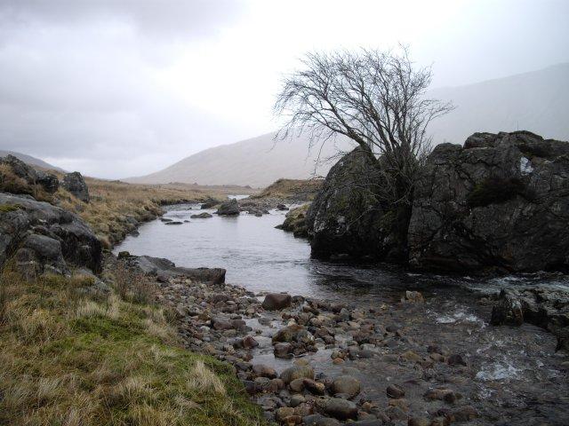 River Kingie