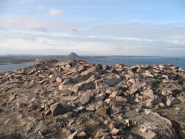 The summit, Bass Rock