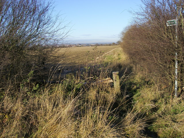 Bridleway to Pasture Cottages