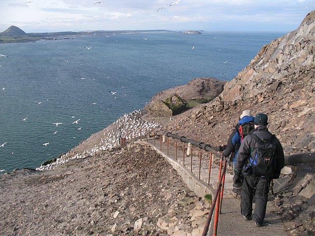 Path, Bass Rock
