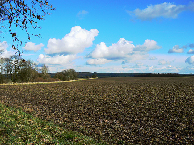 Farmland and byway near Berwick Bassett