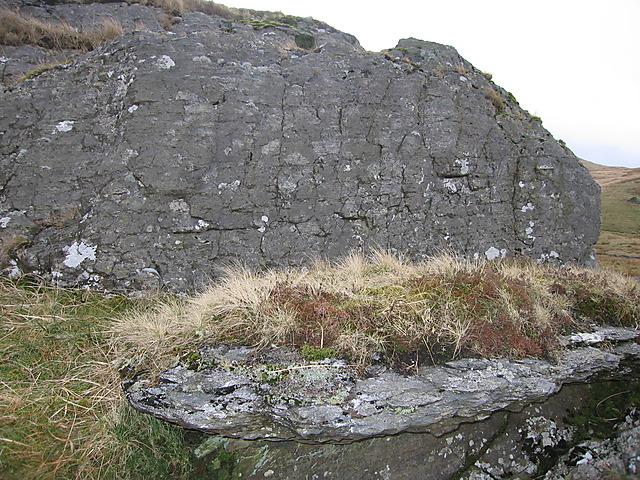 Close-up of a slab of Nant y Moch formation mudstone, Cwm Hyddgen