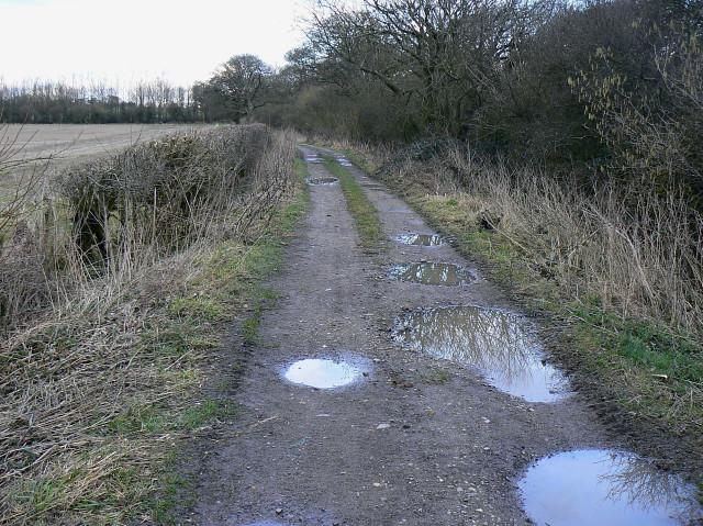Yatesbury Lane, near Yatesbury