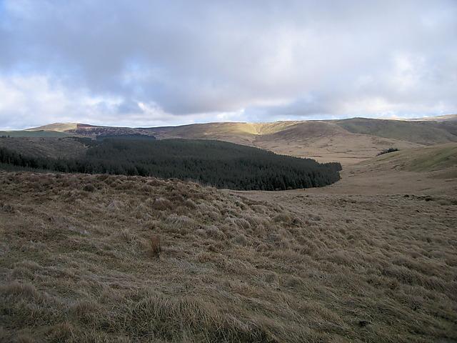 Llechwedd Llwyd and Mynydd Bychan forest