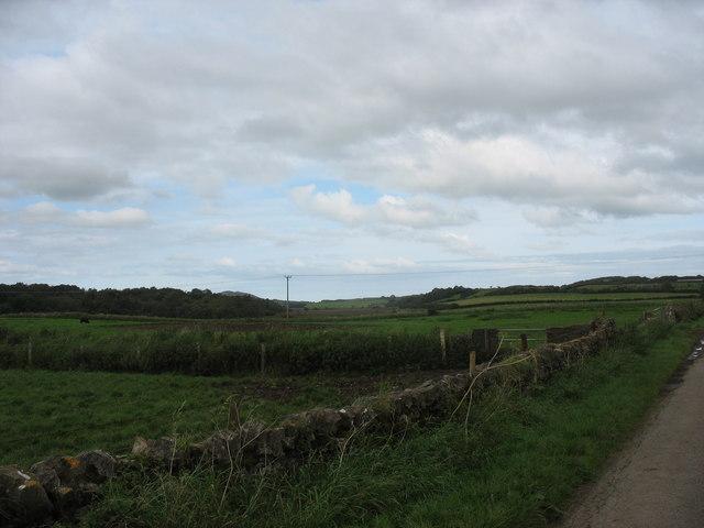 Grazing land west of the Cors Erddreiniog fen
