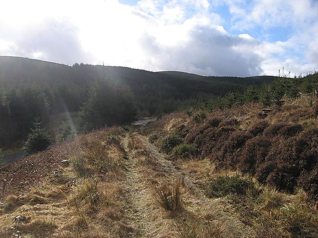 Track leading onto Llechwedd Diflas