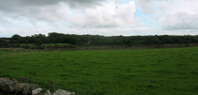 The southern, detached, section of the Cors Erddreiniog fen