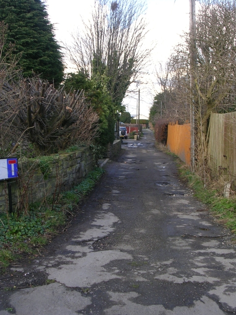 Footpath - White Leeside, Dale Lane