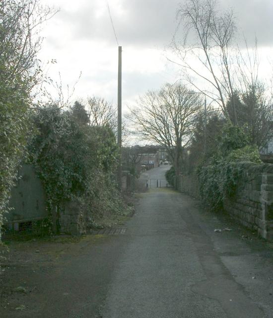 Hollinbank Lane - Dale Lane