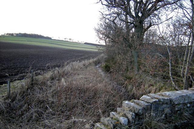 Lochton Burn looking upstream
