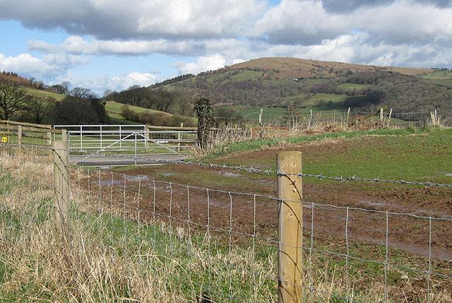 View North to Garway Hill (366m)