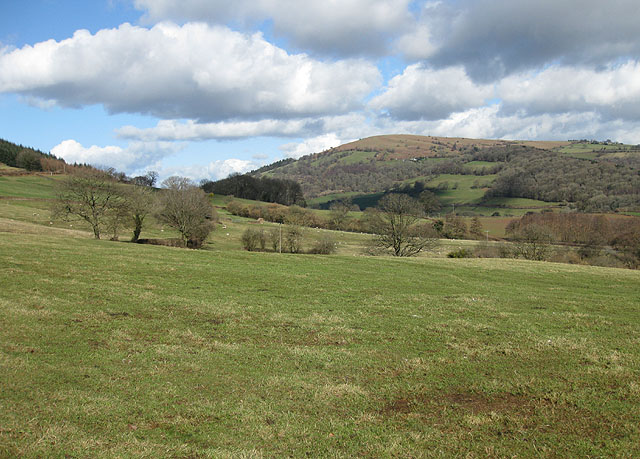 Pastures above the Monnow Valley