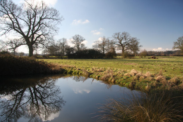 Pond and field at Little Saxham