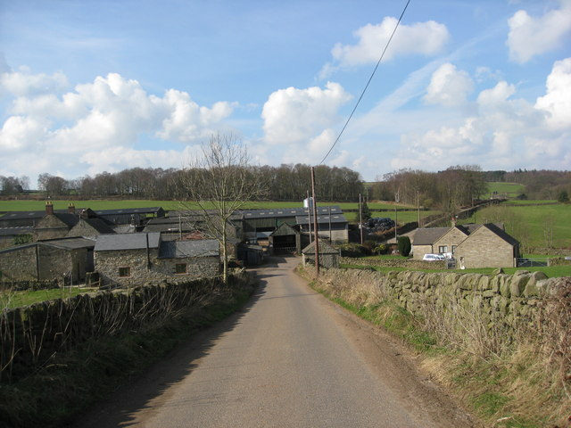 Holly Lane View