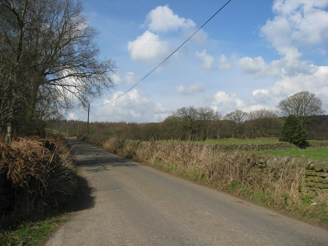 View of Jackass Lane