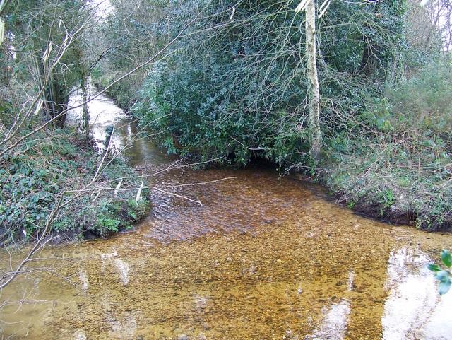 Stream near Ripley