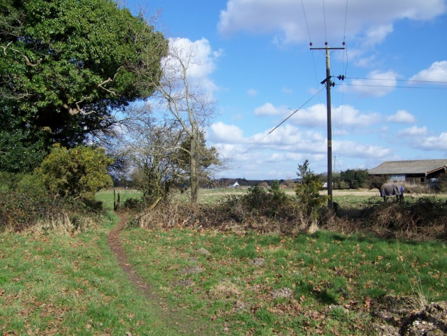 Footpath to Salway's Plantation