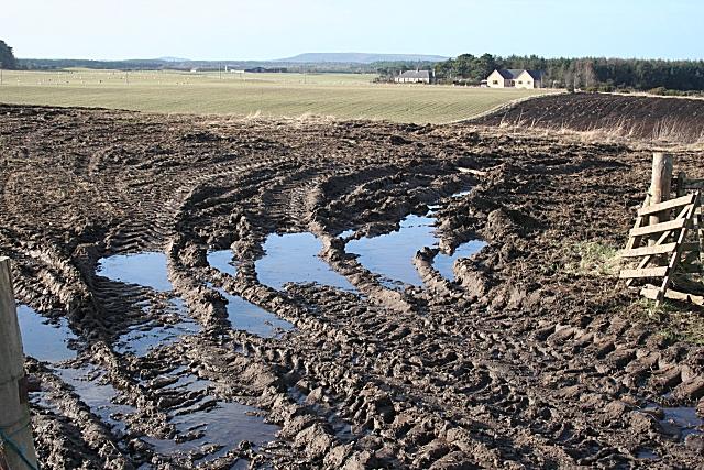 Mud, Glorious Mud!