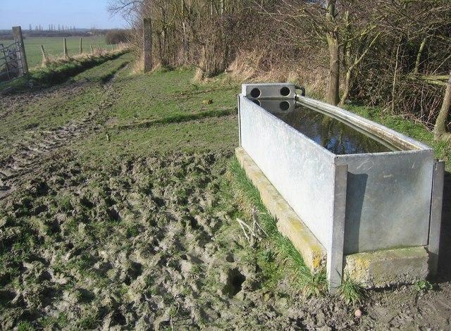 A full water trough