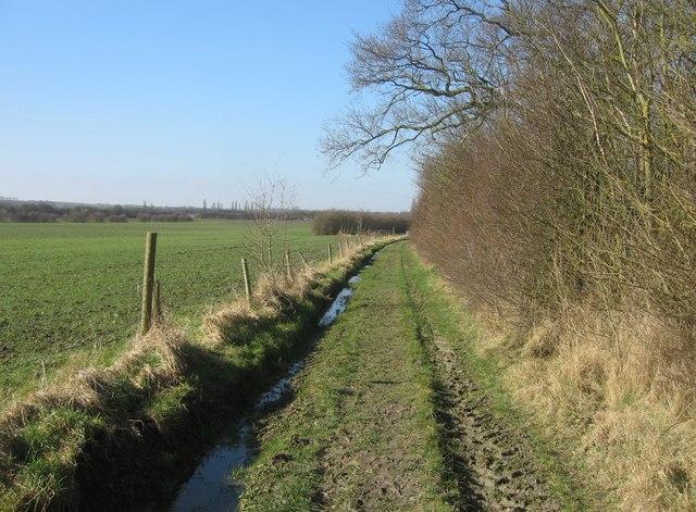 A muddy rutted track