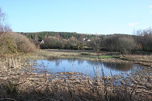 Pond at Fogwatt