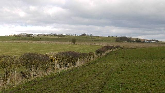 Footpath to Ingoe