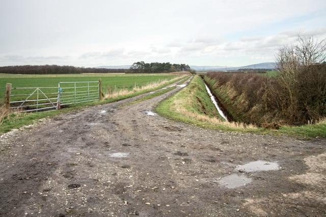 Track Around Cogie Hill