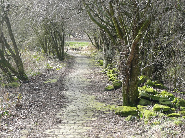 Footpath to Copley, Skircoat (Halifax)