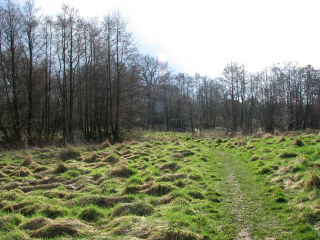 Approaching Mill Lane