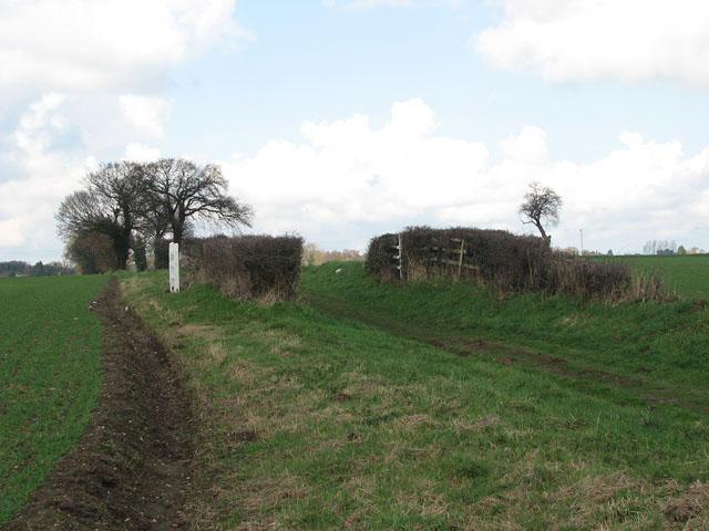 Farm track to Newton Street
