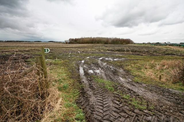 Footpath to Moss Side Farm