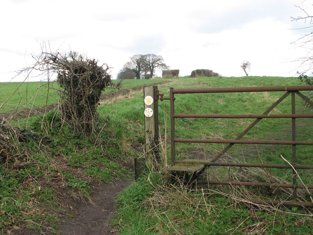 Field gate with integrated stile