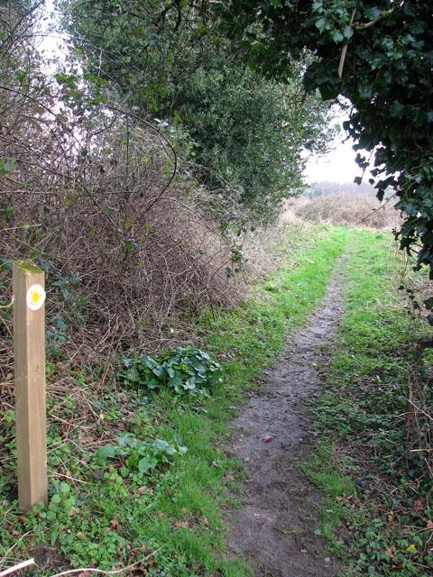 Footpath marker