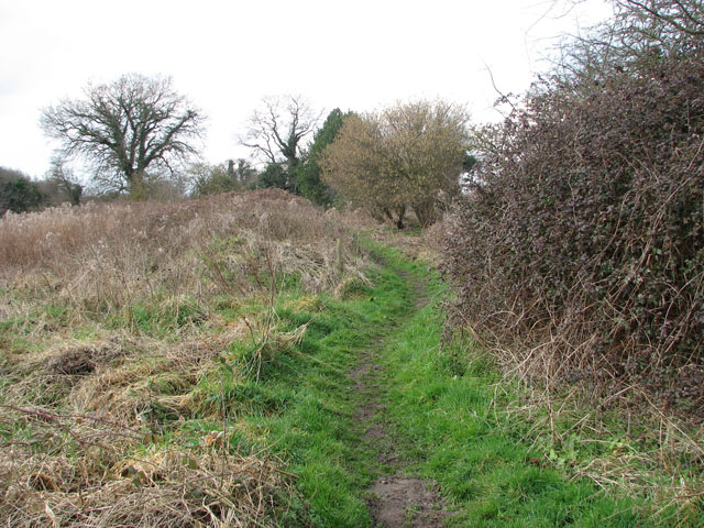 A serpentine path