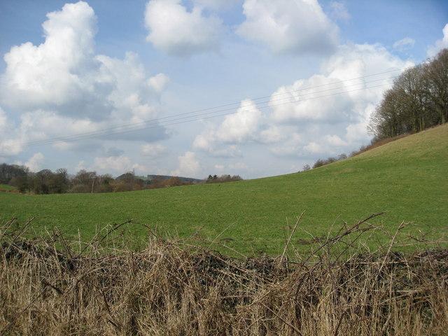Alderwasley Hillside