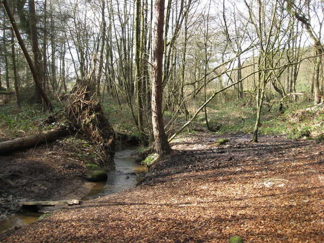 Peatpits Brook