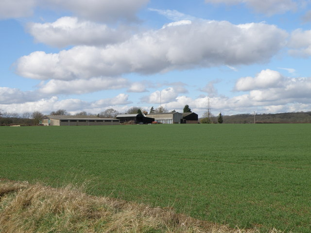 Across the field to Dillington farm