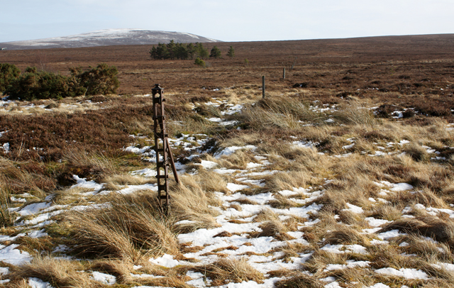 Old fence on moorland